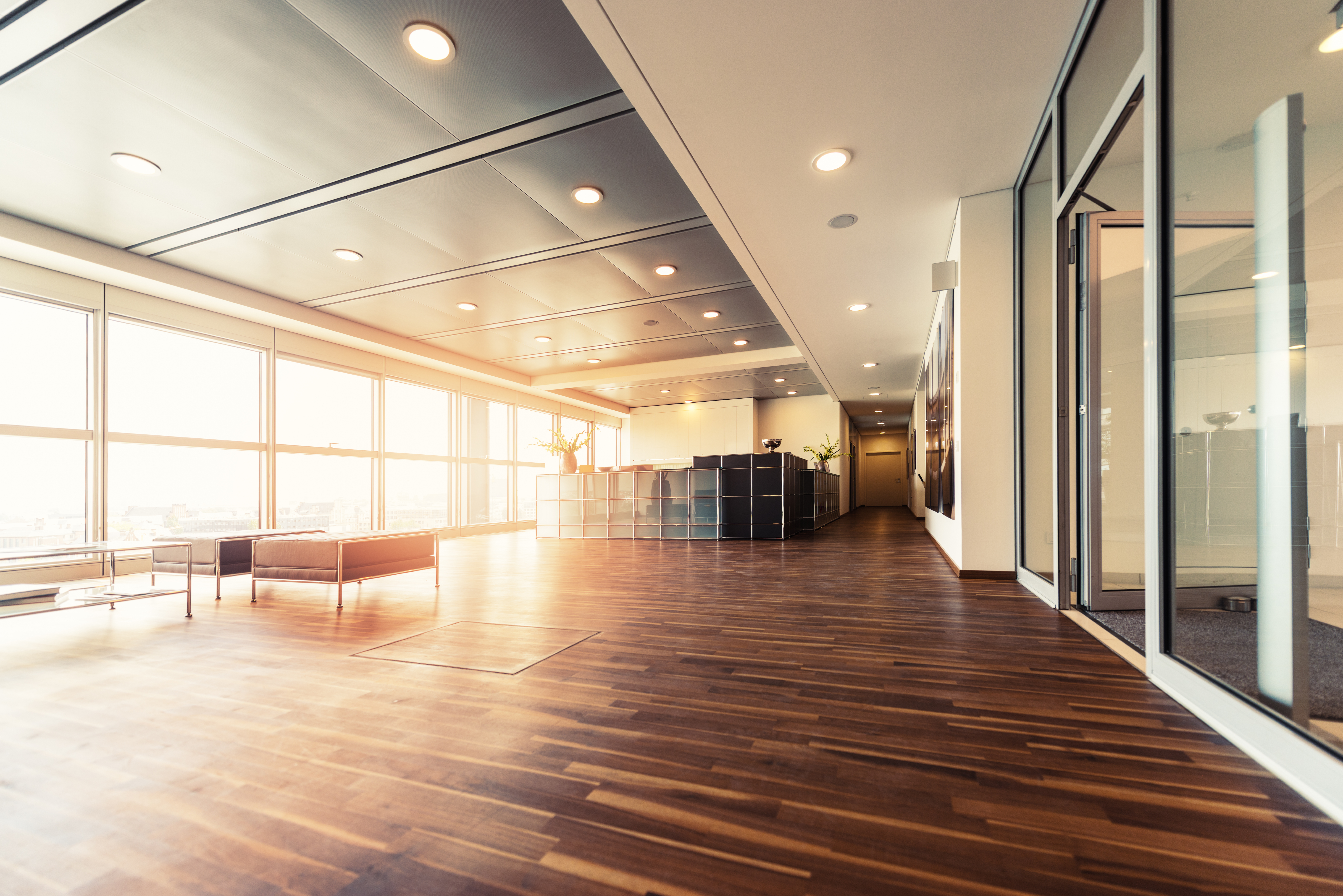Natural light wood floor Texture Office Reception With Wood Floors And Window Wall Interiorcharm Office Reception With Wood Floors And Window Wall Rieke Office