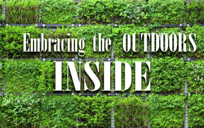 Embracing the Outdoors, Inside