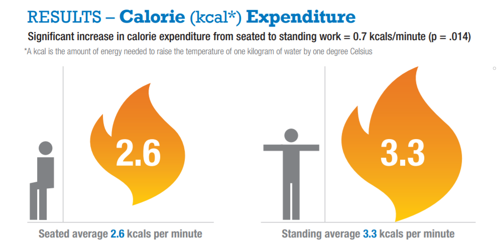 Significant increases in calorie expenditure when standing.